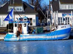 """Fischerboot """"VIT 8"""" im Vitter Hafen auf Hiddensee"""