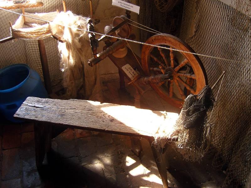 Spinnard im Fischereimuseum Neuendorf