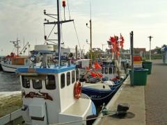 Schiffe im Hafen von Vitte auf Hiddensee