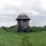 Schutzhütte zur Vogelbeobachtung auf dem Alten Bessin | © Reiseziel Hiddensee 2011
