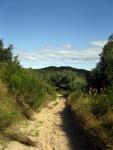 Wanderweg im Hochland von Hiddensee