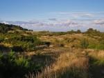 Auf dem Weg zum Kleinen Inselblick im Hochland von Hiddensee