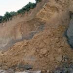 kleiner Erdrutsch an der Steilküste | © Reiseziel Hiddensee 2011