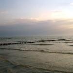 Buhnen am Strand von Vitte / Hiddensee