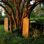Die Epitaphen alter Klosterbrüder oder Äbte stehen immer noch auf dem Inselfriedhof.