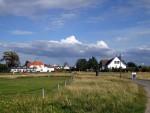 Neuendorf mit Stranddistel