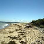 Strand am Enddorn. Wenn nicht gerade viel organisches Material angespült wurde, ist die Sandqualität recht gut.