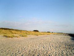 Strand bei Kloster / Hiddensee