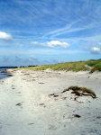 Einsamer Strand bei Neuendorf / Hiddensee