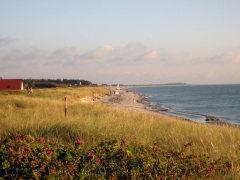 Beginn des Strandabschnitts Vitte / Hiddensee